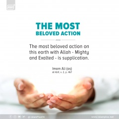 THE MOST BELOVED ACTION